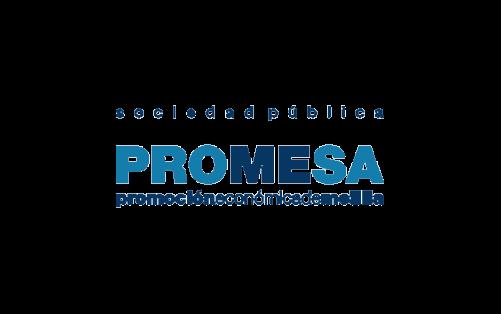 promesa management activo